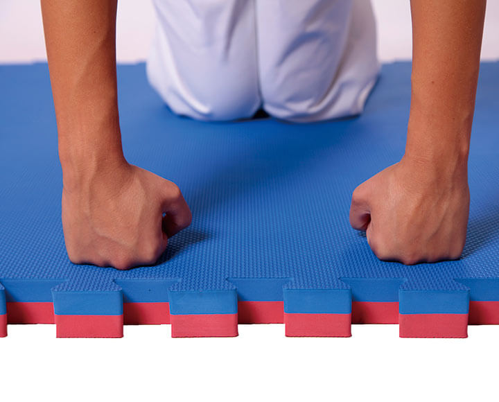 Blue and red color tatami puzzle mats for master